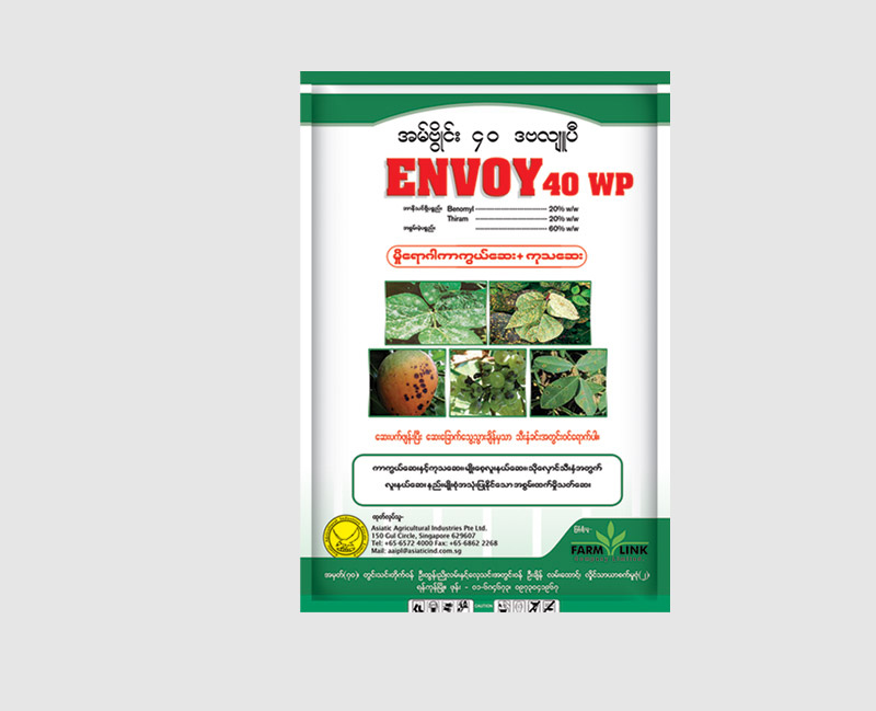 Envoy-40-WP_large