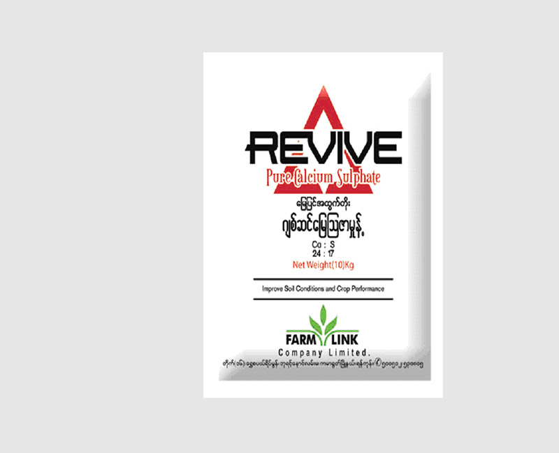 Revive(Pure-Calcium-Sulphate)_large
